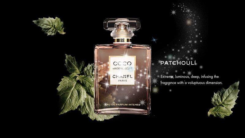 Mui huong nuoc hoa Chanel  Coco Mademoiselle